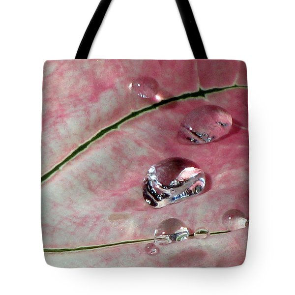 Pink Fancy Leaf Caladium - September Tears Tote Bag