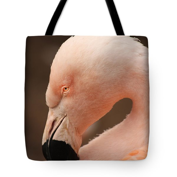 Tote Bag featuring the photograph Pink Flamingo by Bob and Jan Shriner