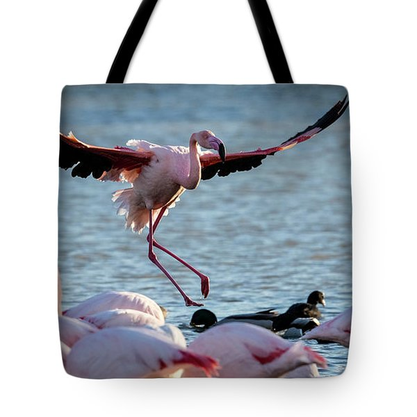 Pink Flamingo Coming Into Land Tote Bag