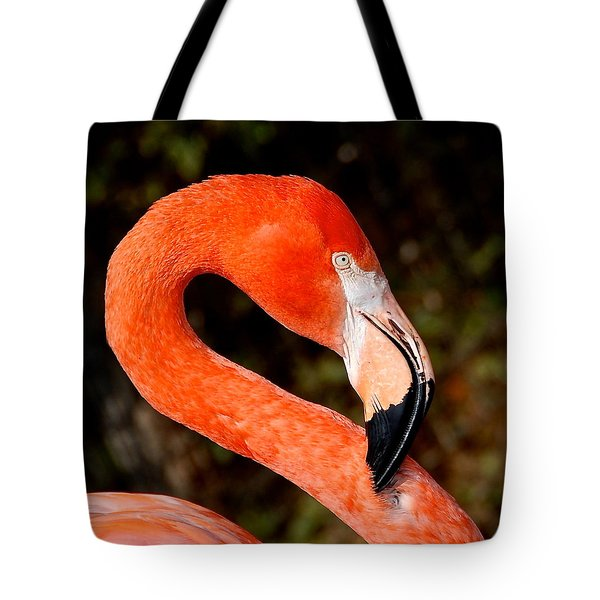 Tote Bag featuring the photograph Not So Pink Flamingo by Dee Dee  Whittle