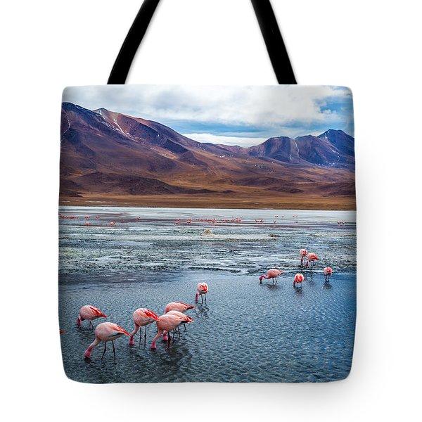 Pink Flamingoes In Bolivia Tote Bag