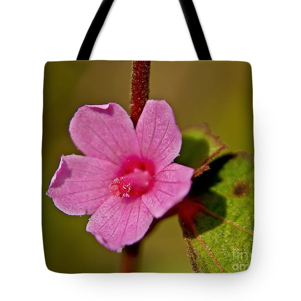 Tote Bag featuring the photograph Pink Flower by Olga Hamilton