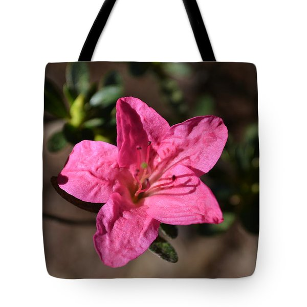 Tote Bag featuring the photograph Pink Flower by Tara Potts