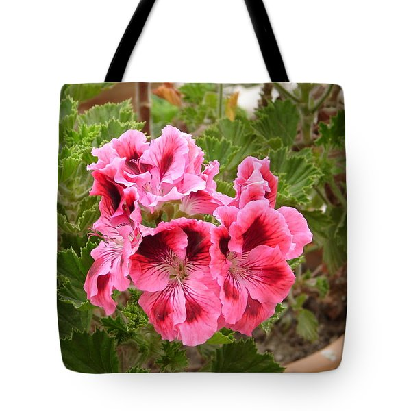 Tote Bag featuring the photograph Pink Geraniums by Lew Davis