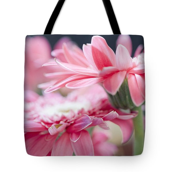Pink Gerber Daisy - Awakening Tote Bag by Ivy Ho