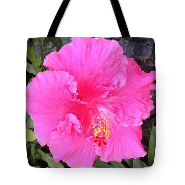 Pink Hibiscus Tote Bag by Alohi Fujimoto