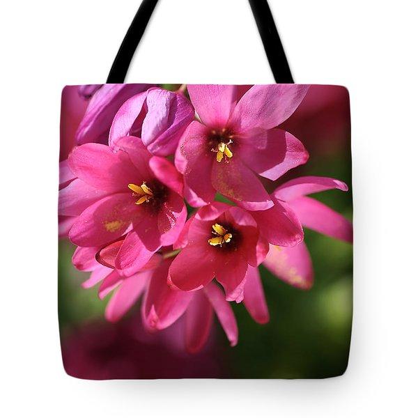 Pink Ixia Tote Bag by Joy Watson
