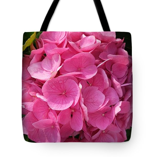 Tote Bag featuring the photograph Blushing Rose by Jeannie Rhode