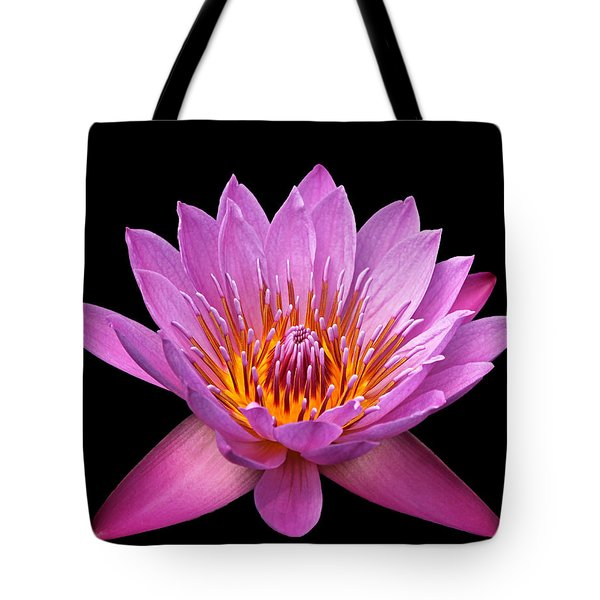 Tote Bag featuring the photograph Pink Lady On Black by Judy Vincent