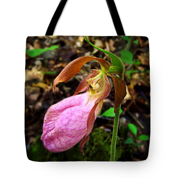 Pink Ladyslipper Orchid Tote Bag