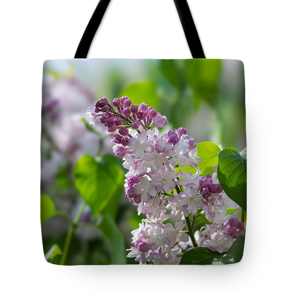 Pink Lilacs And Green Leaves - Featured 3 Tote Bag by Alexander Senin