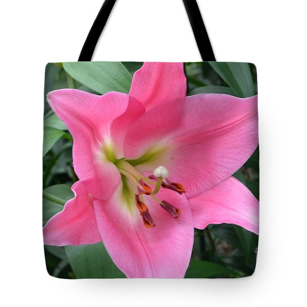 Tote Bag featuring the photograph Pink Lily by Jeannie Rhode