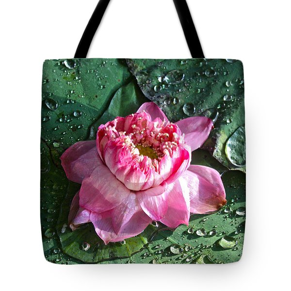 Pink Lotus Flower Tote Bag by Venetia Featherstone-Witty