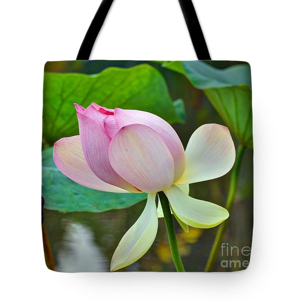 Pink Lotus Tote Bag by Savannah Gibbs