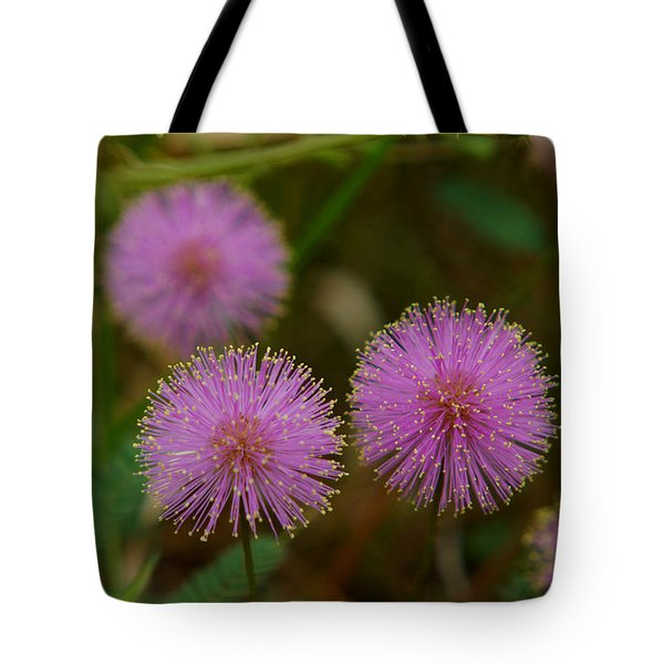 Pink Mimosa Tote Bag by Kim Pate