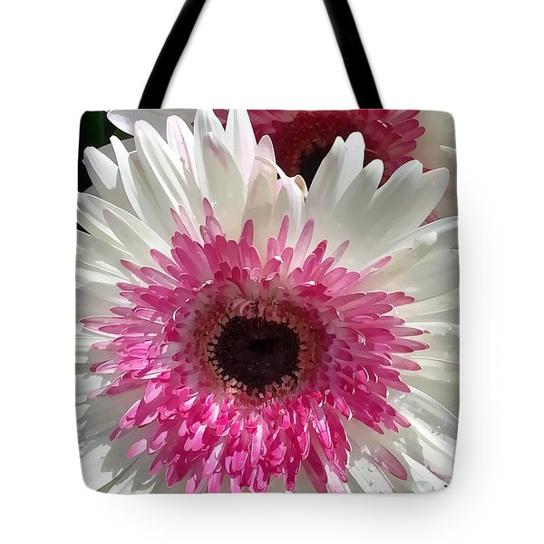 Pink N White Gerber Daisy Tote Bag by Sami Martin