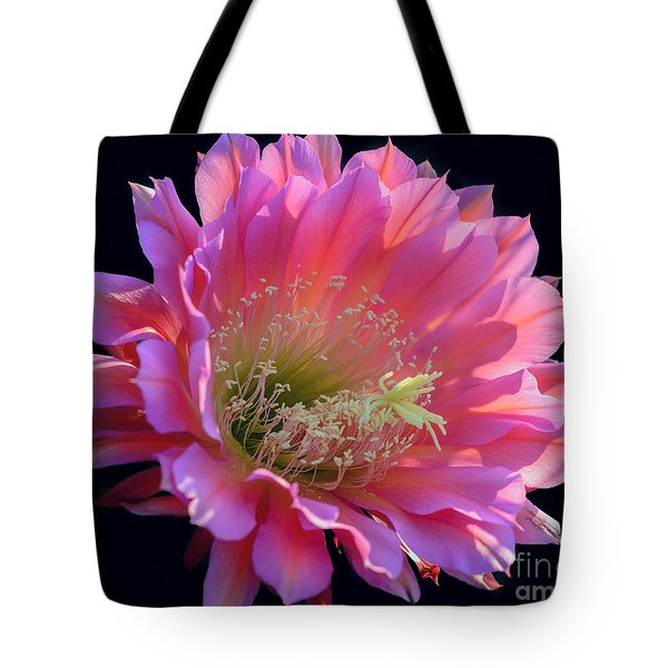 Pink Night Blooming Cactus Flower Tote Bag