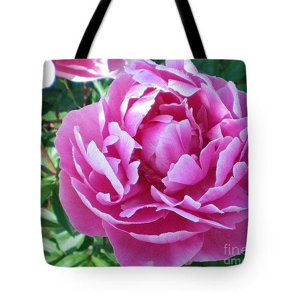 Pink Peony Tote Bag by Barbara Griffin