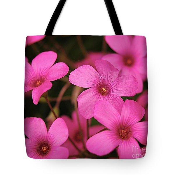 Pink Phlox Tote Bag