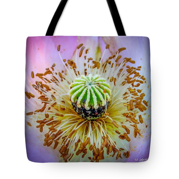 Pink Poppy Squared Tote Bag by TK Goforth