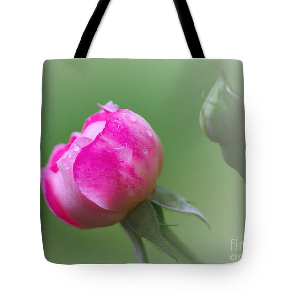 Pink Rose And Raindrops Tote Bag