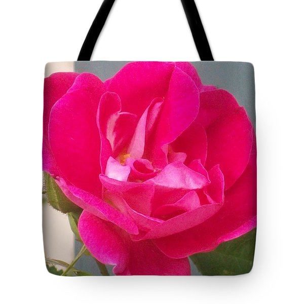 Pink Rose Tote Bag by Jewel Hengen