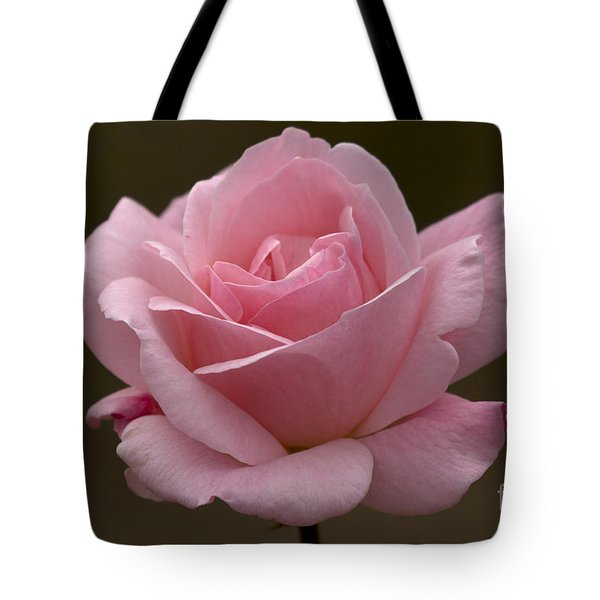 Tote Bag featuring the photograph Pink Rose by Meg Rousher