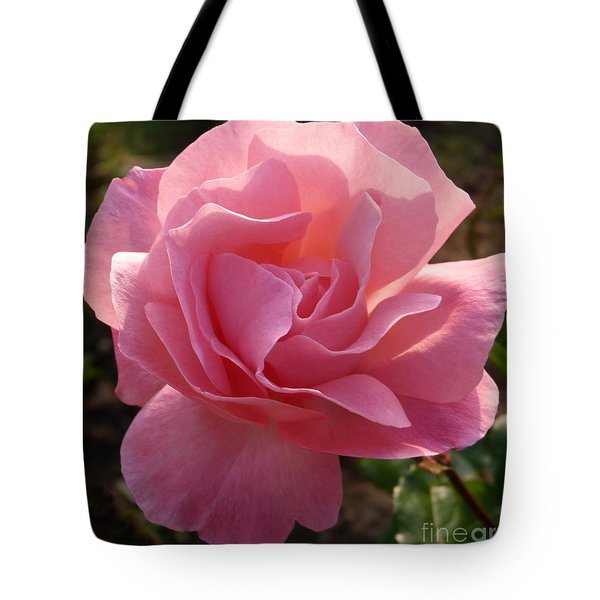 Tote Bag featuring the photograph Pink Rose by Phil Banks
