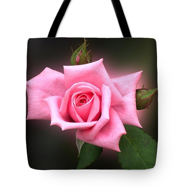 Pink Rose Tote Bag by Thomas Woolworth