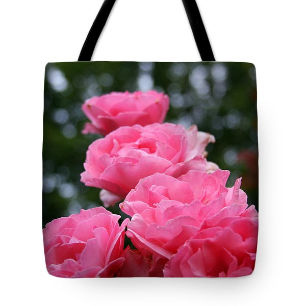 Pink Roses At Sunset Tote Bag by Vadim Levin