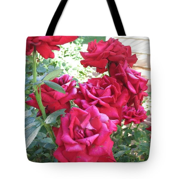 Tote Bag featuring the photograph Pink Roses by Chrisann Ellis
