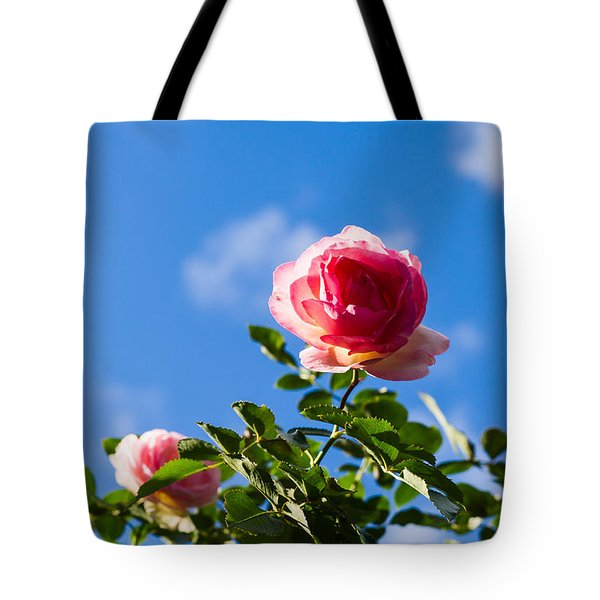 Pink Roses - Featured 3 Tote Bag by Alexander Senin