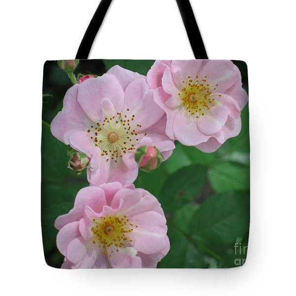 Tote Bag featuring the photograph Pink Roses by HEVi FineArt