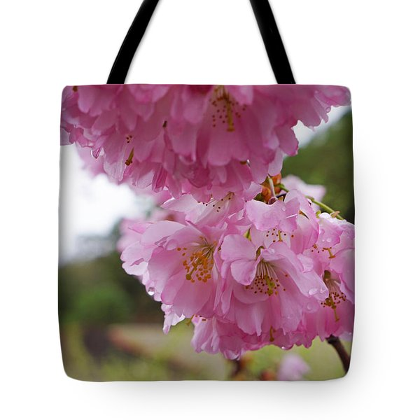 Pink Spring Tree Blossoms Art Prints Tote Bag by Baslee Troutman