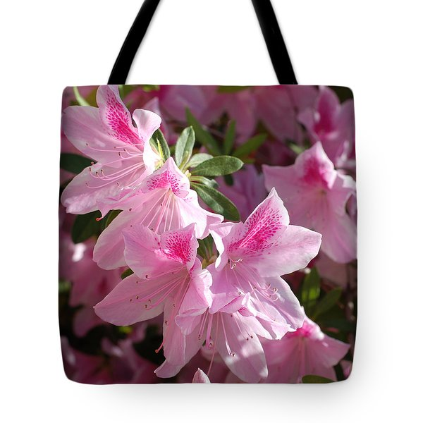 Pink Star Azaleas In Full Bloom Tote Bag