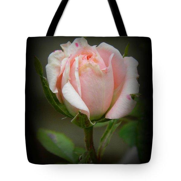 Pink Tea Rose Tote Bag