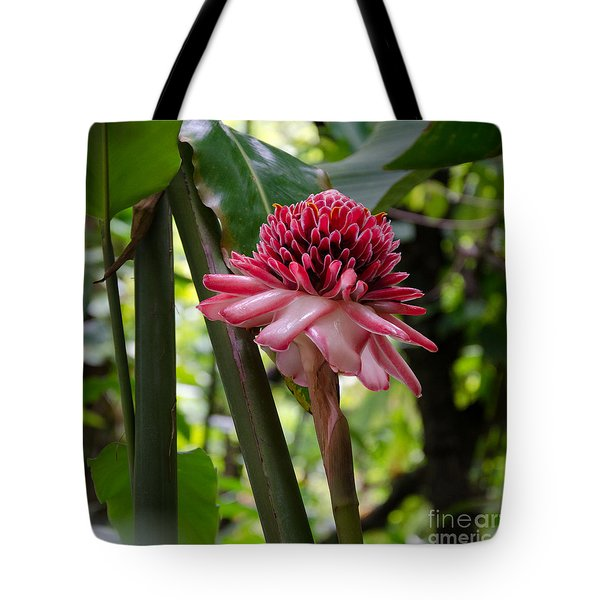 Pink Torch Ginger Tote Bag