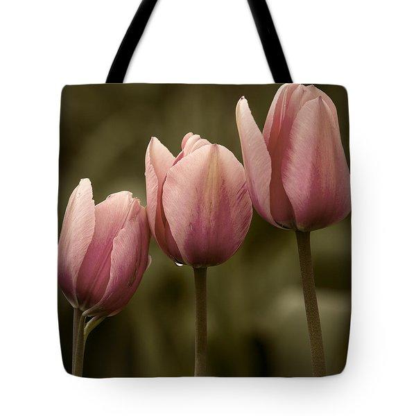 Pink Trio Tote Bag by Sonya Lang