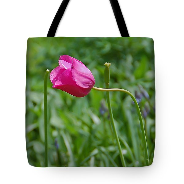 Pink Tulip Tote Bag by Aimee L Maher Photography and Art Visit ALMGallerydotcom