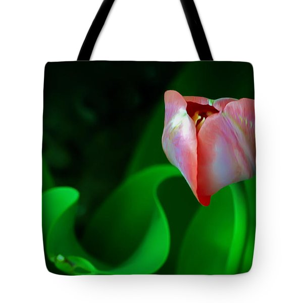 Pink Tulip Tote Bag by Brian Wallace