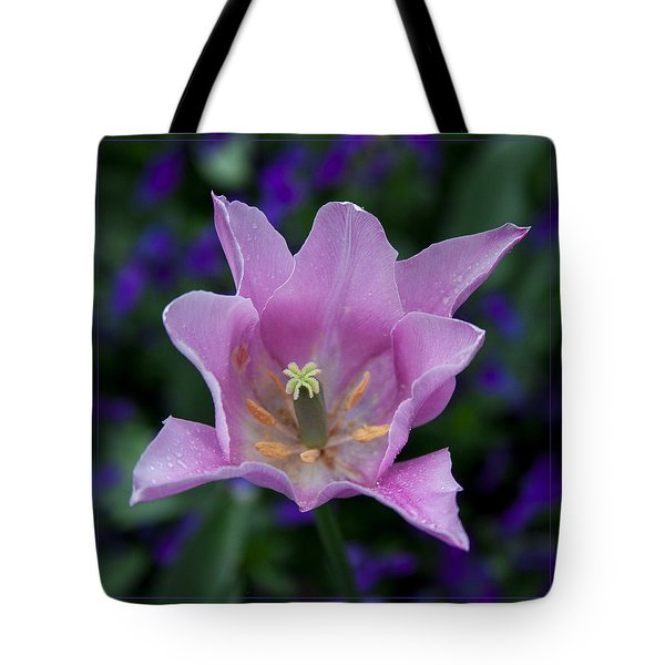 Pink Tulip Flower With A Spot Of Green Fine Art Floral Photography Print Tote Bag by Jerry Cowart