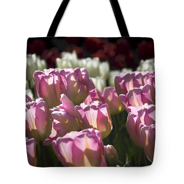 Pink Tulips Tote Bag by Yulia Kazansky