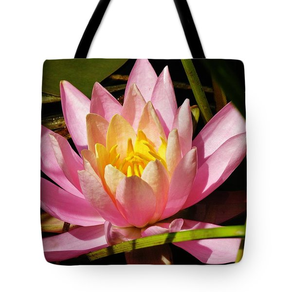 Pink Water Lily Tote Bag by Sherman Perry