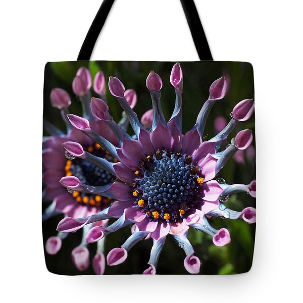 Pink Whirls Tote Bag by Rona Black