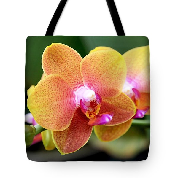 Tote Bag featuring the photograph Pink Yellow Orchid by Rona Black