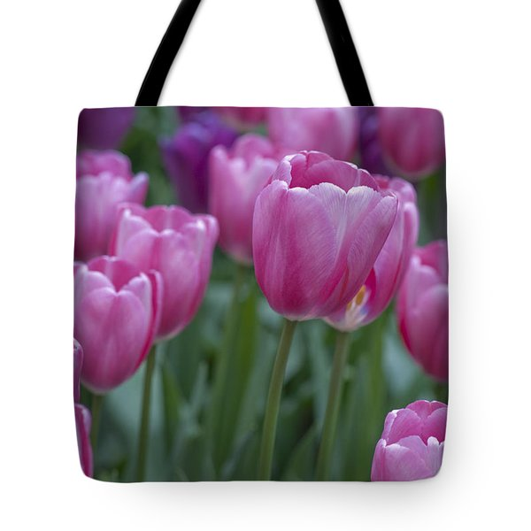 Pinks And Purples Tote Bag