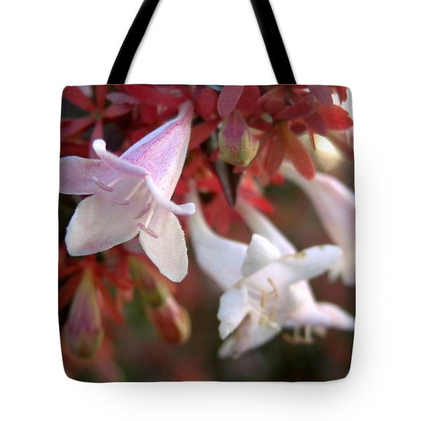Pinks Tote Bag by Joseph Skompski