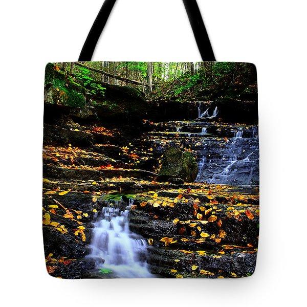 Pipestem Beauty Tote Bag