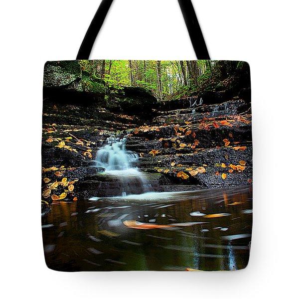 Pipestem Falls Tote Bag