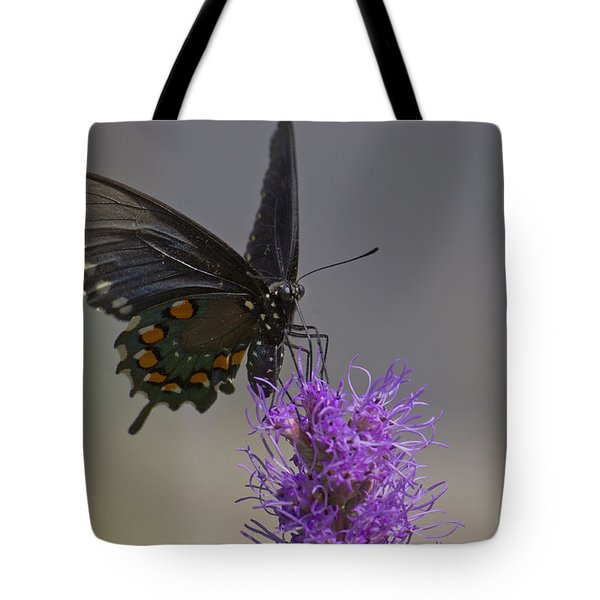 Pipevine Alights Tote Bag